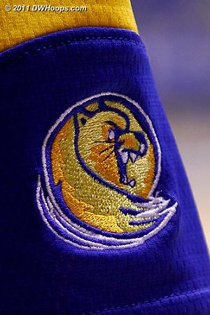 Lander's Bearcat logo is a bit too weasel-like for my taste