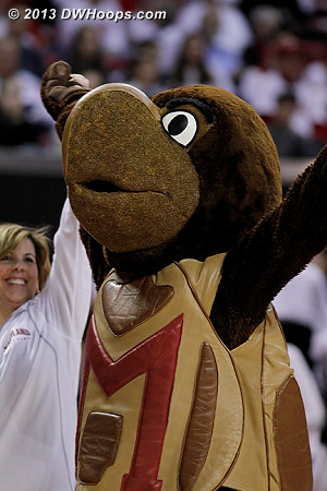 Nothing can take away Testudo's grin  - MD Players: Mascot Testudo