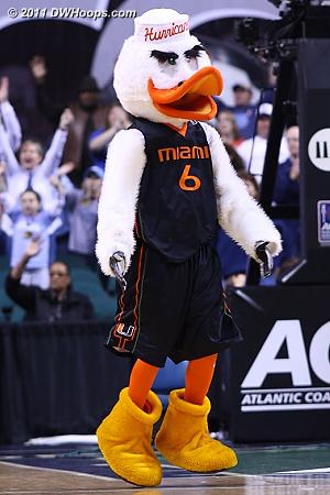 Miami mascot Sebastian the Ibis