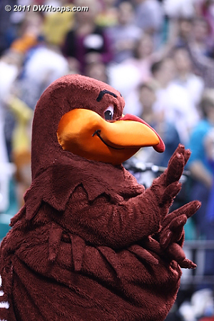 Hokie Bird