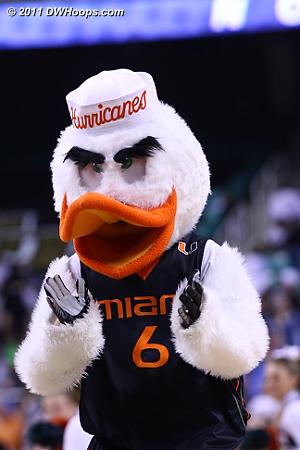 Miami mascot Sebastian