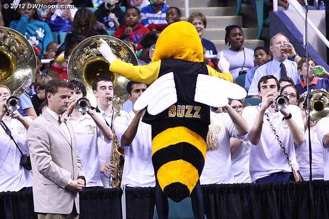 DWHoops Photo  - GT Players: Mascot Buzz,  Georgia Tech Band