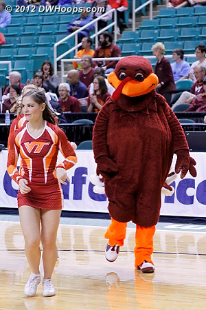 DWHoops Photo  - VT Players: Mascot Hokiebird,  Virginia Tech Cheerleaders