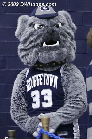 Georgetown Hoya Mascot.