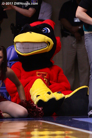 Iowa State Cardinal - spooky teeth for a bird!
